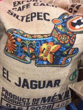 Mexican Jaguar Altura
