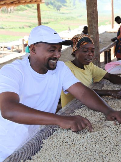 Burundi Shembati Estate Coffee Sorting Beans